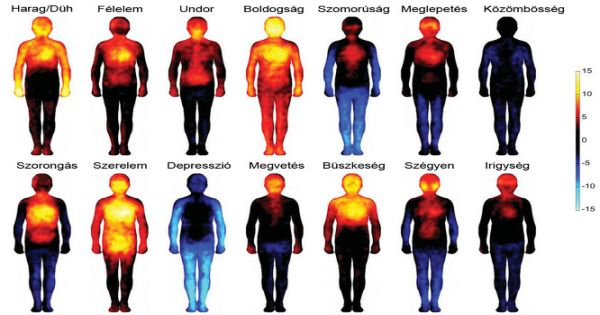Hogyan szorul be a fájdalom a testünkbe?